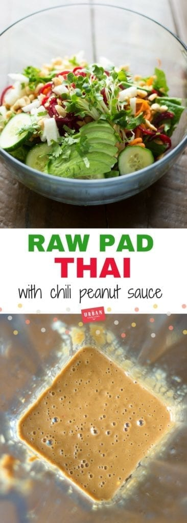 Vegan Raw Pad Thai Pin for Pinterest