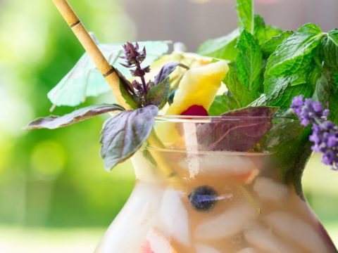 Fizzy Fishbowls filled with herbs