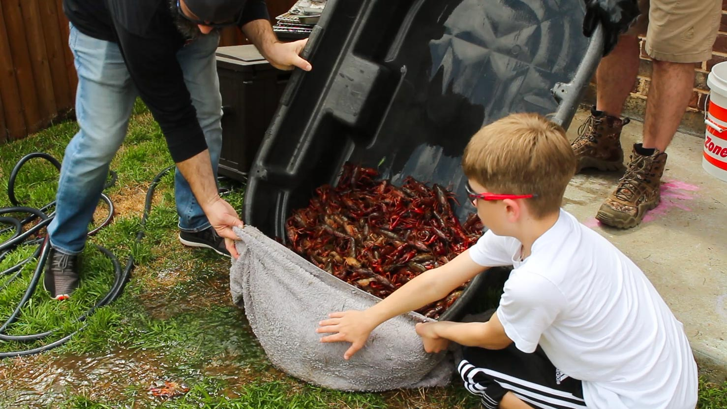 Draining the cleaned crawfish