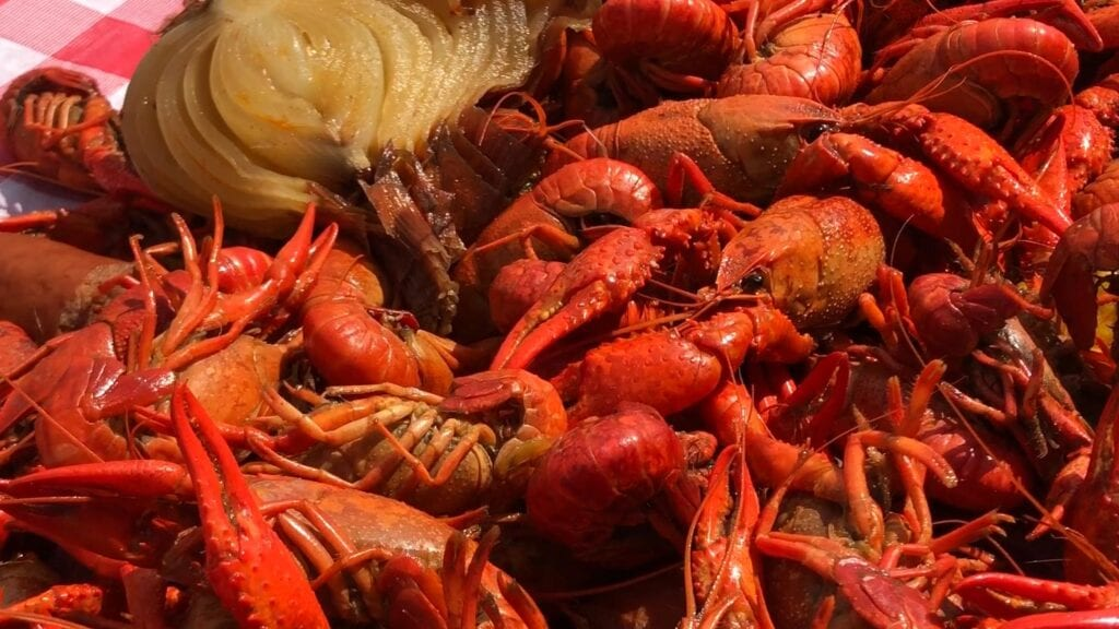 How to throw a crawfish boil - completed crawfish
