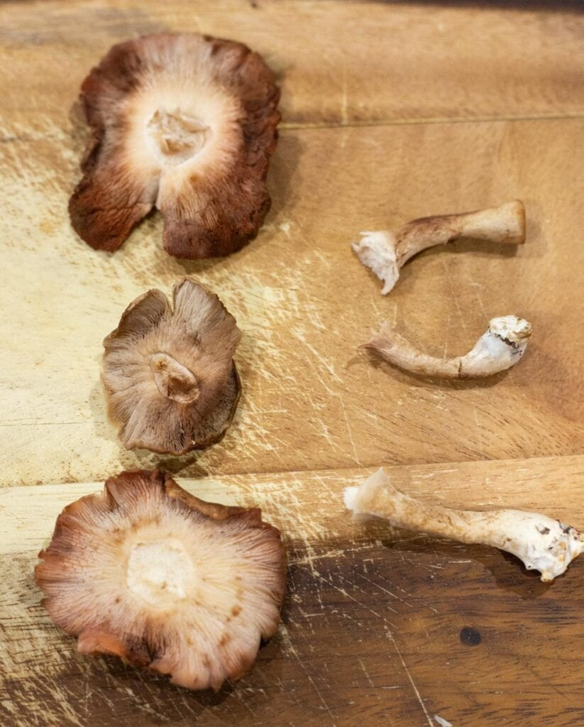 Shiitake mushrooms with their stems removed at the base