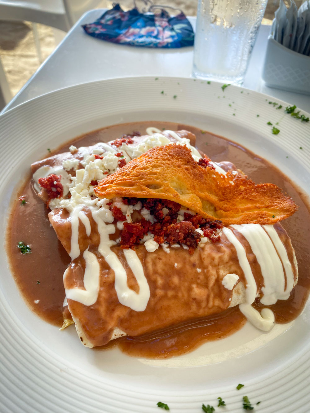 Breakfast Enchiladas smothered in creamy bean sauce and topped with crema and bacon.