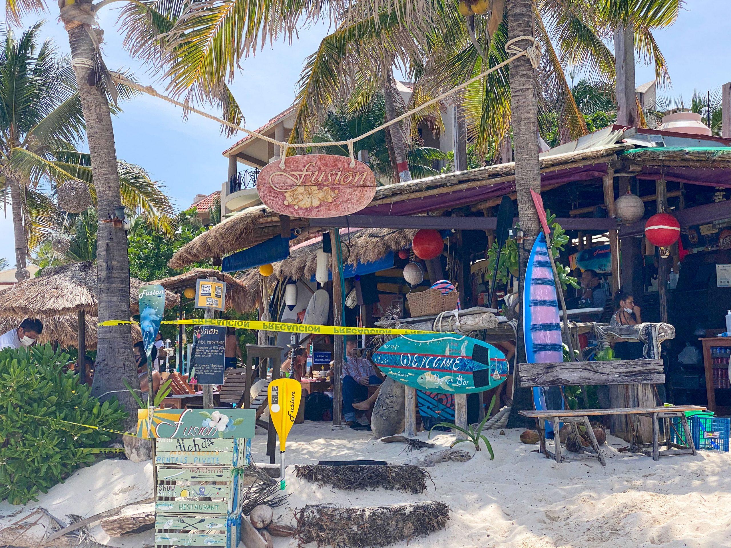 Fusion Beach Club exterior, underneath green palm trees on the beach.