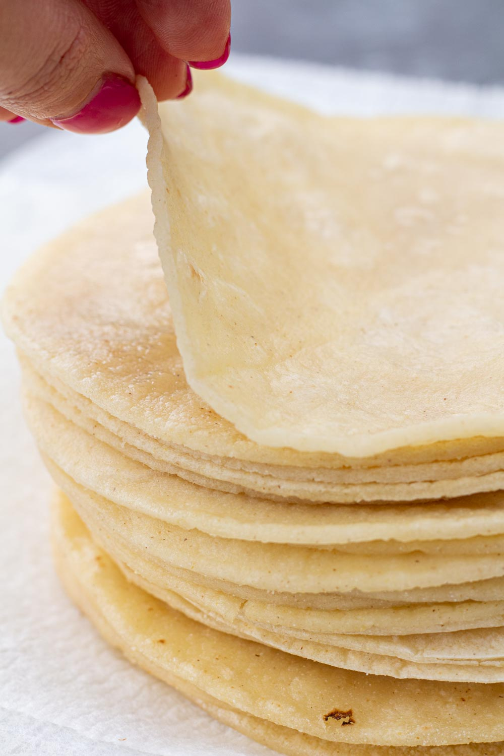 A stack of fried and softened corn tortillas on a paper towel.